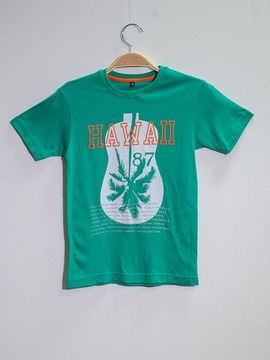 Camiseta Hawaii